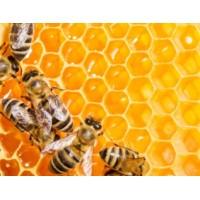 Μελισσοκέρι  γνήσιο 80γρ